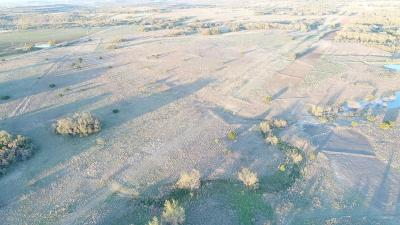 Farm & Ranch For Sale: Tbd County Road 403