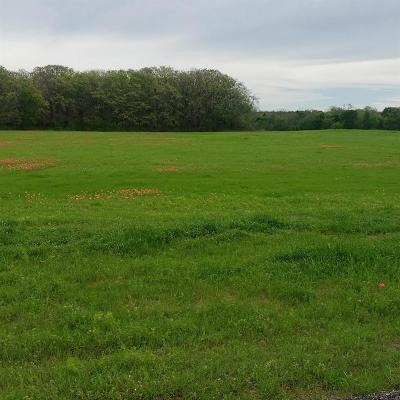 Parker County Residential Lots & Land For Sale: Tbd T1 N Katy Ranch Court N