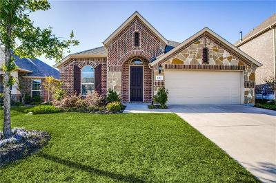 Mckinney Single Family Home For Sale: 1213 Caney Creek Lane