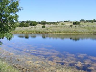 Farm & Ranch For Sale: Tbd County Road 162