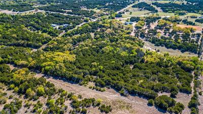 Granbury Farm & Ranch For Sale: 2608 Hermosa