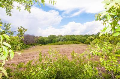 Weatherford TX Farm & Ranch For Sale: $240,000