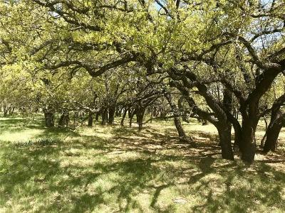 Comanche Farm & Ranch For Sale: 7151 Fm 1702