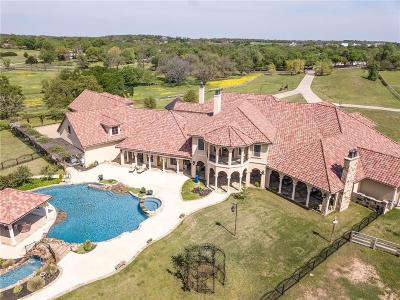 Flower Mound Single Family Home For Sale: 7007 Hawk Road