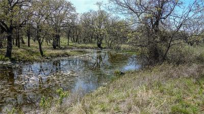 Eastland County Farm & Ranch For Sale: Tbd2 Cr 145