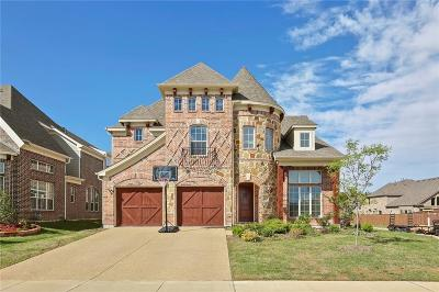 Plano Single Family Home For Sale: 4925 Albatross Drive