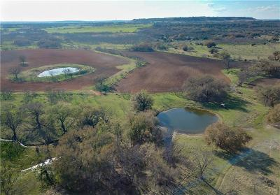 Mills County Farm & Ranch For Sale: 55 Cr 275 C