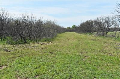 Archer County Residential Lots & Land For Sale: Red Robin Lane