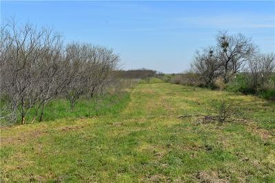 Archer County Residential Lots & Land For Sale: 00 Red Robin Lane