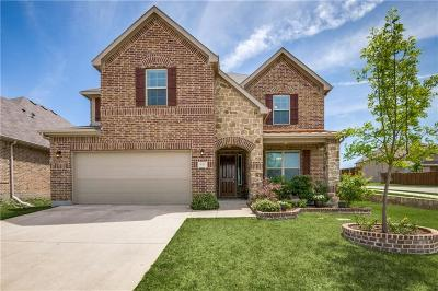 Little Elm Single Family Home For Sale: 645 Sundrop Drive