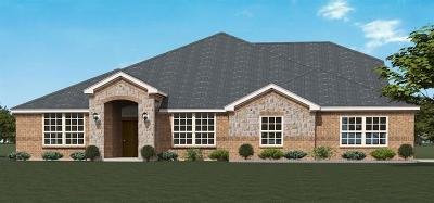 Midlothian Single Family Home For Sale: 458 Lilly
