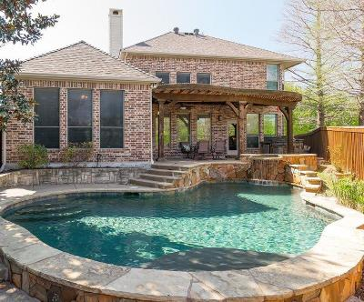 Allen Single Family Home For Sale: 1900 Palisade Drive