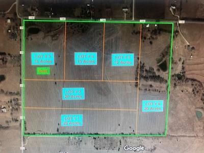 Blue Ridge Farm & Ranch For Sale: 15036 County Road 1100 Lot#1