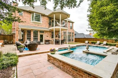 McKinney Single Family Home For Sale: 807 Hills Creek Drive