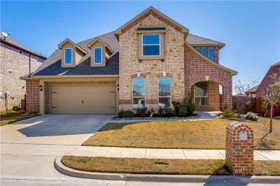 Denton County Single Family Home For Sale: 9309 Benbrook Lane