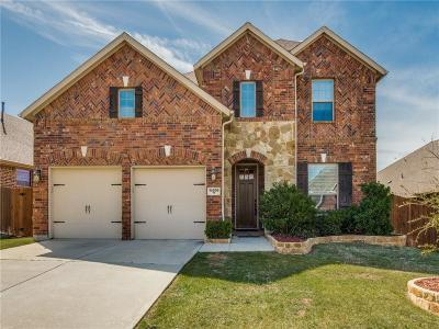 Fort Worth Single Family Home For Sale: 14509 Seventeen Lakes Boulevard
