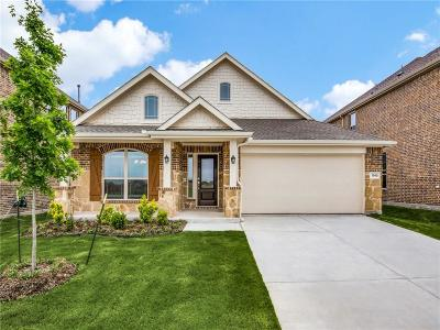 Little Elm Single Family Home For Sale: 1340 Lake Grove Drive