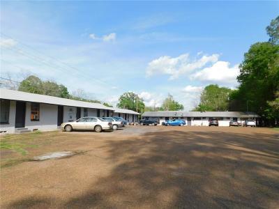 Quitman Multi Family Home For Sale: 511 N Winnsboro Street