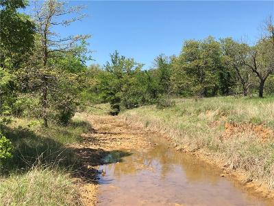 Brownwood Farm & Ranch For Sale: Tbd County Road 120