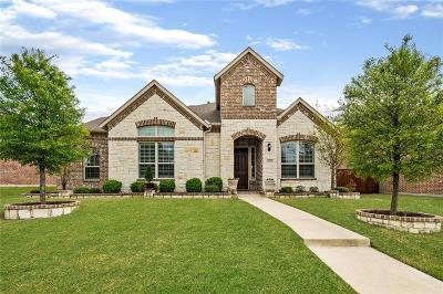 Allen Single Family Home For Sale: 1051 Enchanted Rock Drive
