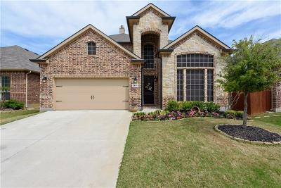 Denton Single Family Home For Sale: 2801 Pioneer Drive