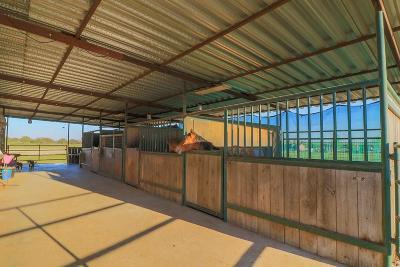 Poolville Farm & Ranch For Sale: 6502 Advance Road