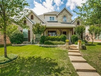 Allen Single Family Home For Sale: 1040 Big Spring Drive