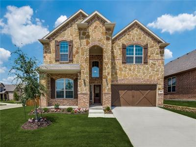 Lewisville Single Family Home For Sale: 1301 Prairie Lake Path
