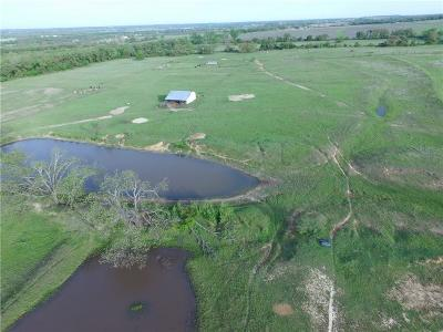 Stephenville Farm & Ranch For Sale: 1529 County Road 430