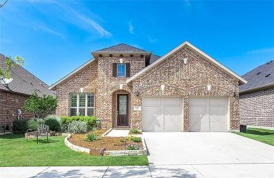 Little Elm Single Family Home For Sale: 861 Field Crossing