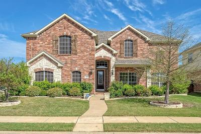 Denton Single Family Home For Sale: 7101 Silktree Court