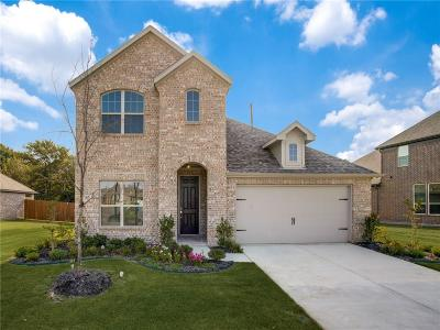 Little Elm Single Family Home For Sale: 1801 Angus Drive