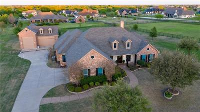 Collin County Single Family Home For Sale: 1700 Briardale Drive