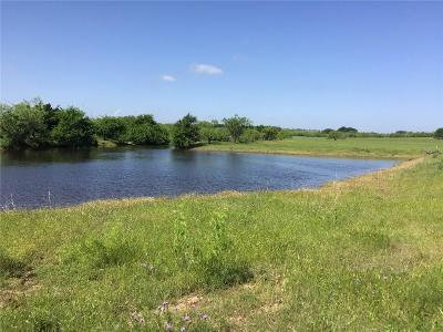 Comanche Farm & Ranch For Sale: Tbd Hwy 377 S