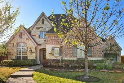 Allen Single Family Home For Sale: 904 Rachels Court