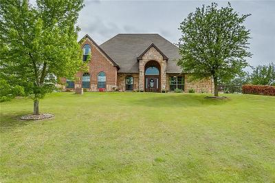 Aledo Single Family Home For Sale: 216 Scenic View Drive