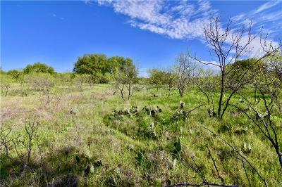 Brownwood Farm & Ranch For Sale: Tbd County Road 456
