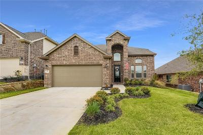 Collin County Single Family Home For Sale: 916 Hodge Street