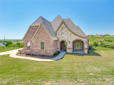 Fort Worth Single Family Home For Sale: 12409 Bella Colina Drive