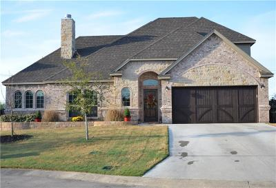 Willow Park Single Family Home For Sale: 410 Spyglass Drive