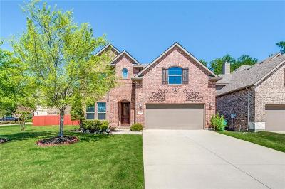 Mckinney Single Family Home For Sale: 3700 Buchanan Street