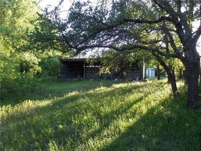 Dublin Single Family Home For Sale: 900 County Road 341