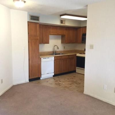 Dallas County Condo For Sale: 9809 Walnut Street #111E