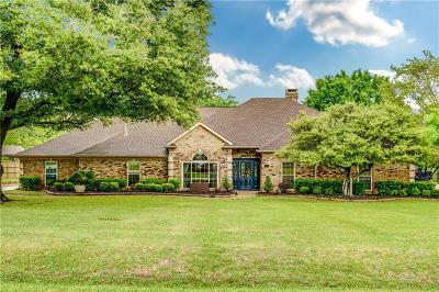 Allen Single Family Home For Sale: 301 Willow Creek Circle