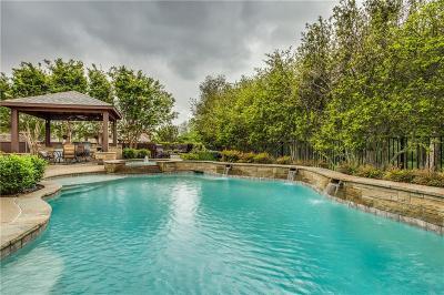 Allen Single Family Home For Sale: 2141 Waterrock Drive