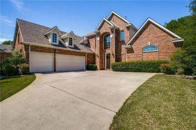 Allen Single Family Home For Sale: 1207 Conroe Drive