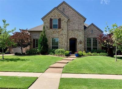 Allen Single Family Home For Sale: 873 Paradise Circle