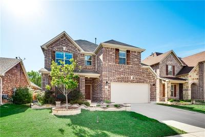 Little Elm Single Family Home For Sale: 3477 Canyon Lake Drive