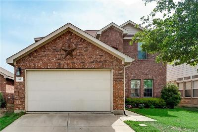 Denton County Single Family Home For Sale: 163 Wild Rose Court