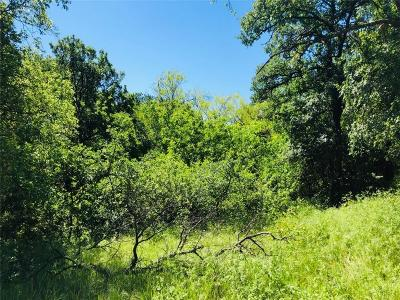 Mineral Wells TX Residential Lots & Land For Sale: $11,500